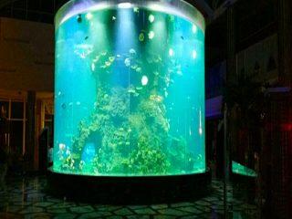 Kinija pagal užsakymą pigaus super didelis apvalus pmma stiklo akvariumais aiškus cilindro akrilo žuvų talpyklos