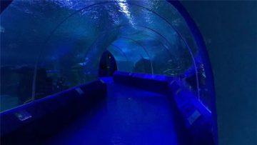 Akvariumo tunelio 180 ar 90 laipsnių akrilo plokštės