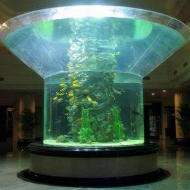 pmma stiklo akvariumas pusė cilindro perspex aiškus žuvų bakas