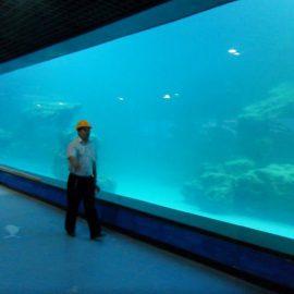 Akmenų akvariumo / okeanariumo akrilo skydelis