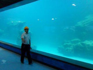 Akmenų akvariumas, okeanariumas