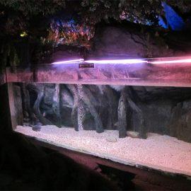 Povandeninio jūros pasaulio akrilo baseino skydelis / langas