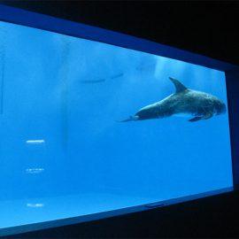 aukštos kokybės didelis akrilo akvariumas / baseino langas povandeninis storas langų lapas