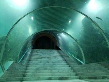 Akrilo tunelio akvariumo projekto kaina