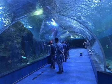 Panaikintas aklirinio akrilo tunelio akvariumas
