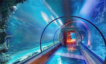 Modernus akrilo akvariumo ilgio tunelis
