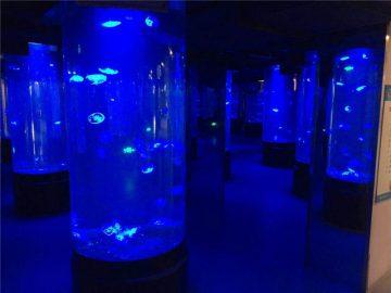 Akrilo medūza akvariumo bako stiklas